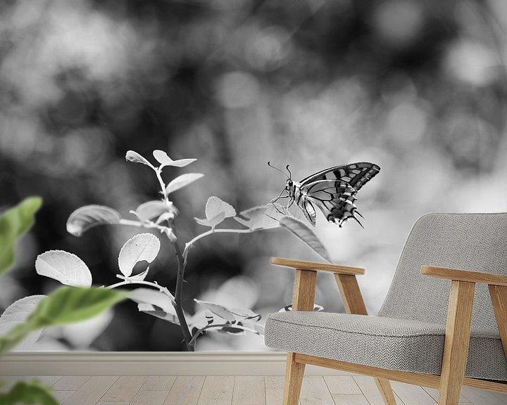 Beispiel fototapete: Schmetterling in schwarz und weiß von Chantal Koster