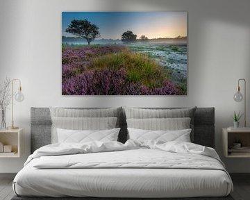 Bloeiende Heide van Mark van der Walle