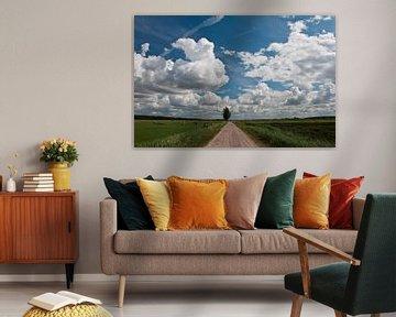 Hollands landschap van Richard de Nooij