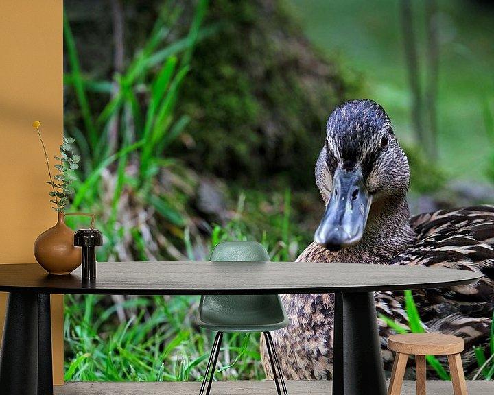 Beispiel fototapete: Ente im Gras von Borg Enders