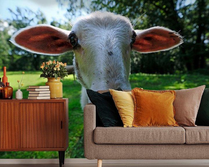 Beispiel fototapete: Weitwinkel-Schaf von Borg Enders