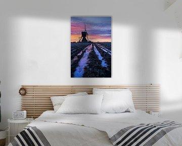 Wunderschöner Sonnenaufgang an der Mühle von Halma Fotografie
