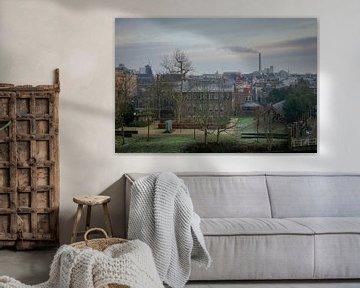 Zicht op Leiden van Dirk van Egmond