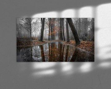 Tussen herfst en winter van Peter Korevaar
