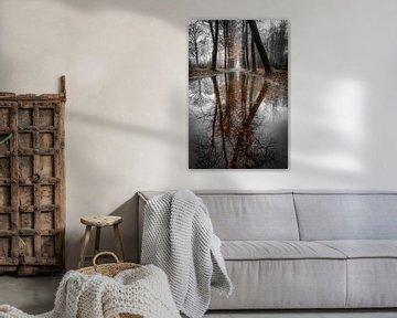 Tussen herfst en winter.... (2) van Peter Korevaar