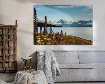 View on mount Cook van Anne Vermeer