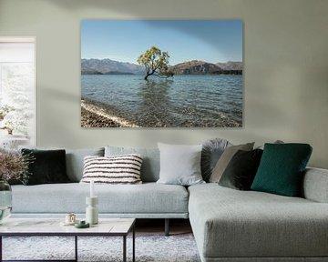 Wanaka Tree van Anne Vermeer