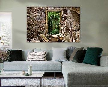 Blick auf den Wald von Dick Carlier