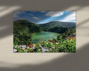 Bloemenmeer op de Azoren van Jeroen Mikkers