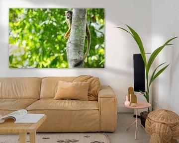Mona Lisa Monkey van Lennart Verheuvel