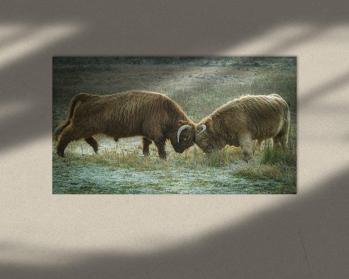 Sfeerimpressie: vechtende hooglanders van Dirk van Egmond