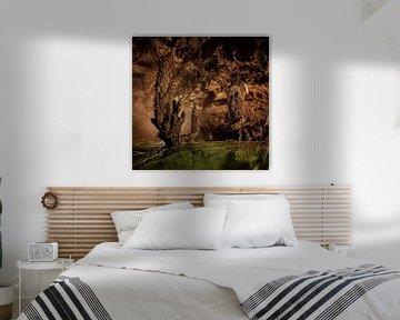 Grotten van Vietnam van Jeroen Mikkers