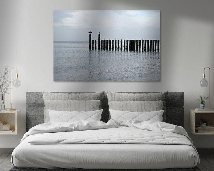 Impression: Cormorans sur la plage de la mer du Nord sur 7Horses Photography