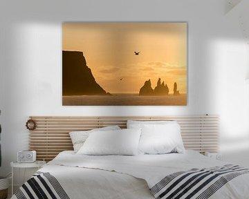 Sonnenaufgang an den Reynisdrangar-Klippen, Vic, Südküste, Island * sunrise at Reynisdrangar-cliffs, von Denis Feiner