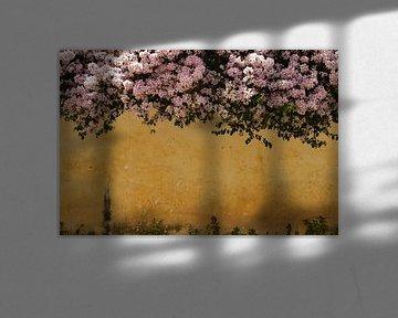 Bunte, florale Wand von Zoe Vondenhoff