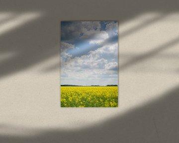 Earth and sky van Dick Nieswaag