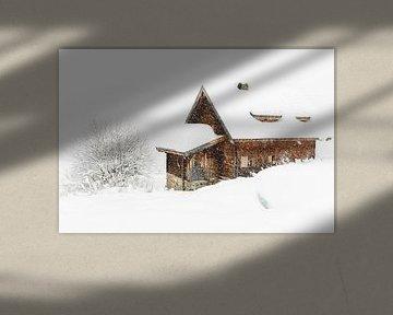 Chute de neige dans les Alpes sur Lynxs Photography