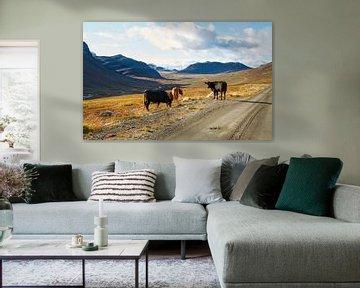 Koeien in Noors berglandschap van Sran Vld Fotografie
