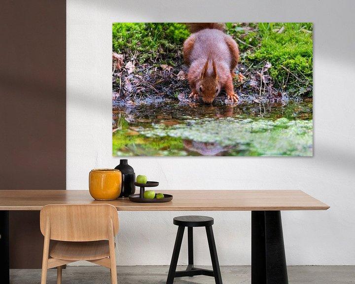 Sfeerimpressie: eekhoorn van Jaap Tempelman