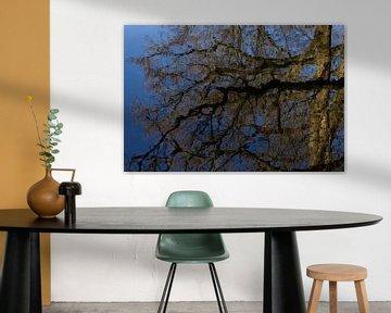 Een abstracte weerspiegeling boom in water van Herman Kremer