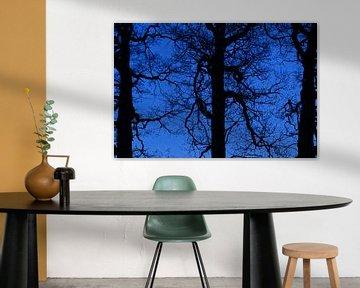 Deep blue bomen houden de wacht van Herman Kremer