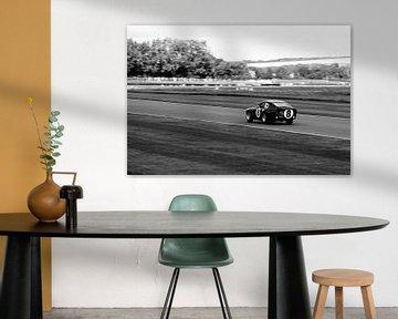 Vintage race 8 van Jaap Ros