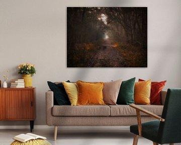 Mysteriöser Wald von Maikel Brands