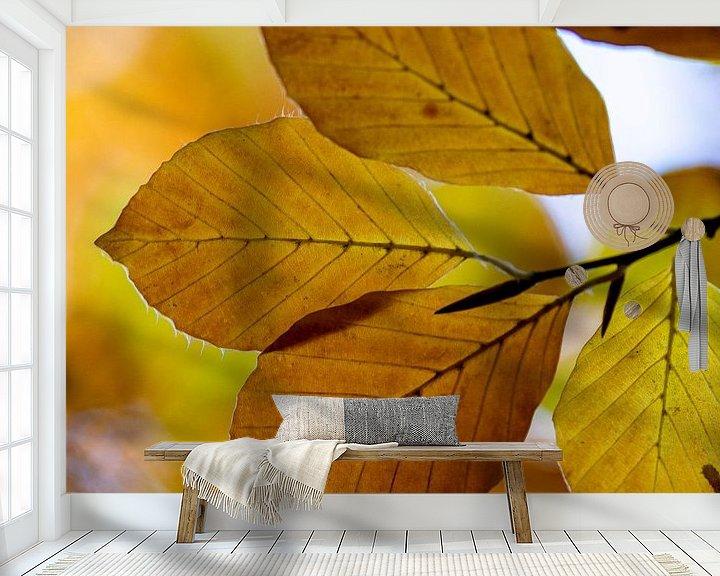 Sfeerimpressie behang: Herfst blad van Ton de Koning