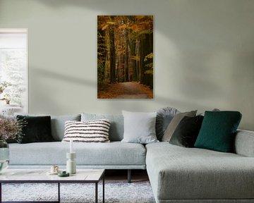 Het pad van Leontien van der Linden - Wapenaar