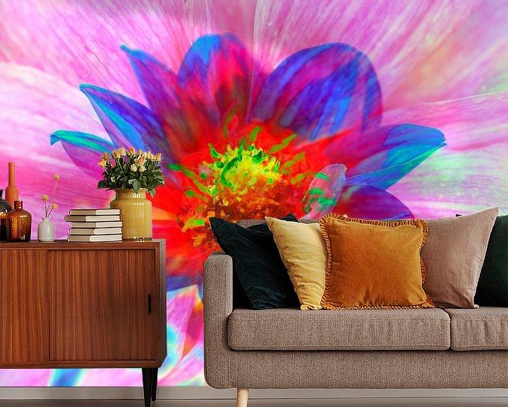 Beispiel fototapete: Bunt , blühende  Dahlie,abstrakt,Blume von Torsten Krüger