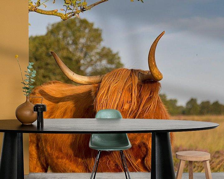 Sfeerimpressie behang: Schotse hooglander I van Anneke Hooijer