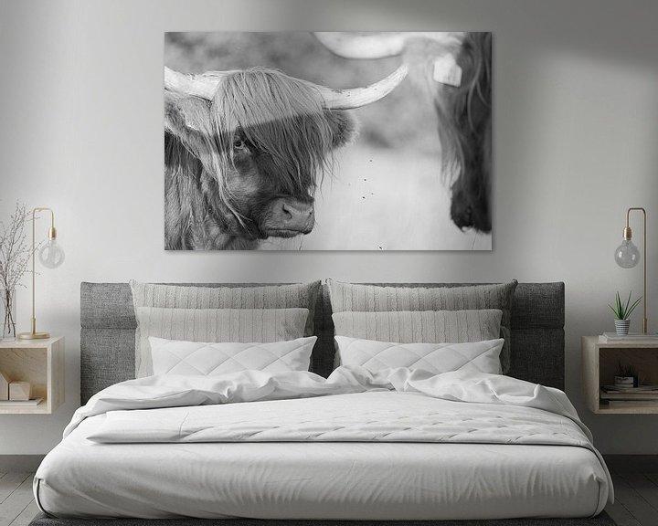 Sfeerimpressie: Schotse hooglander in zwart wit van Anneke Hooijer