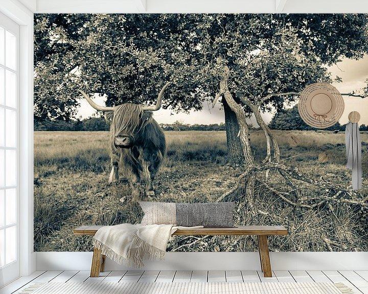 Sfeerimpressie behang: Schotse hooglander naast eik in sepia van Anneke Hooijer