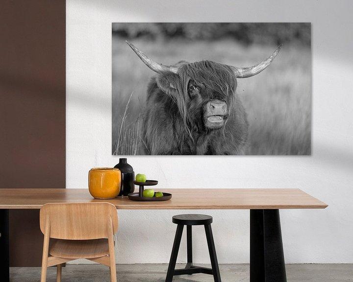 Sfeerimpressie: Schotse hooglander (zwart wit) van Anneke Hooijer