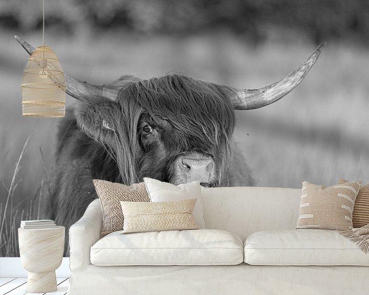 Sfeerimpressie behang: Schotse hooglander (zwart wit) van Anneke Hooijer