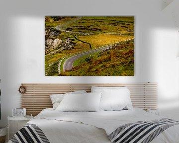 Irland - Mayo - Achill Island - kurvige Straße