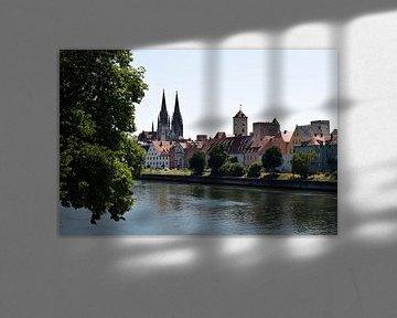 Regensburg van Celyn Vries