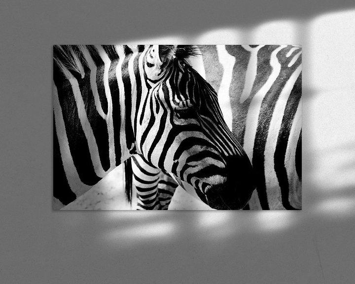 Sfeerimpressie: Zebra strepen van Nico van der Vorm