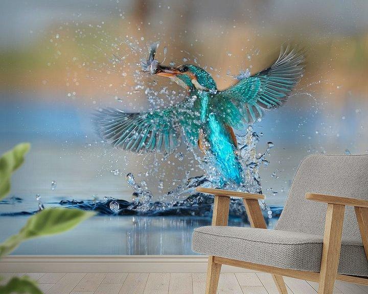 Sfeerimpressie behang: IJsvogel - In een flits van IJsvogels.nl - Corné van Oosterhout