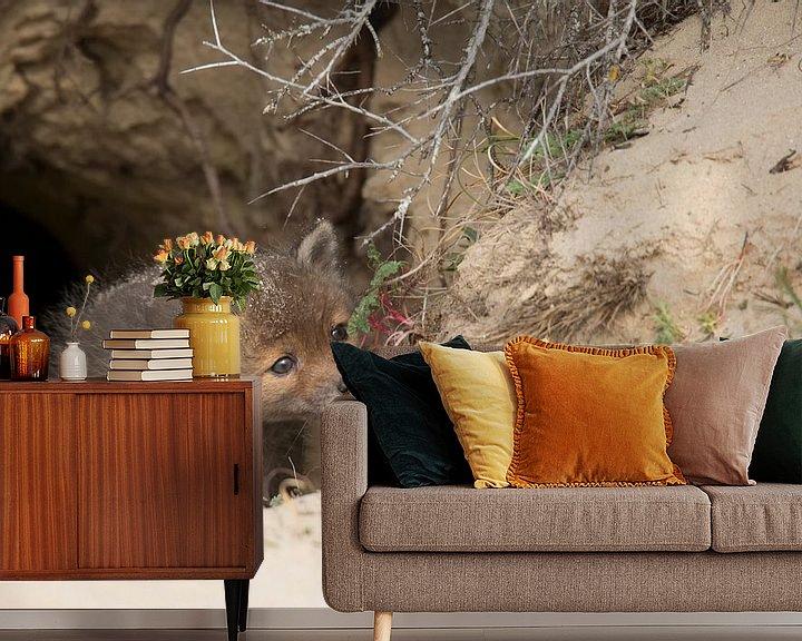 Beispiel fototapete: Fuchswelpe von Ina Hendriks-Schaafsma