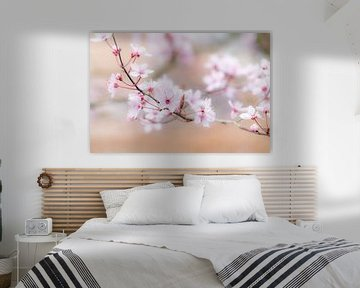 Zarte Pastelltöne im Frühling von Margreet Piek