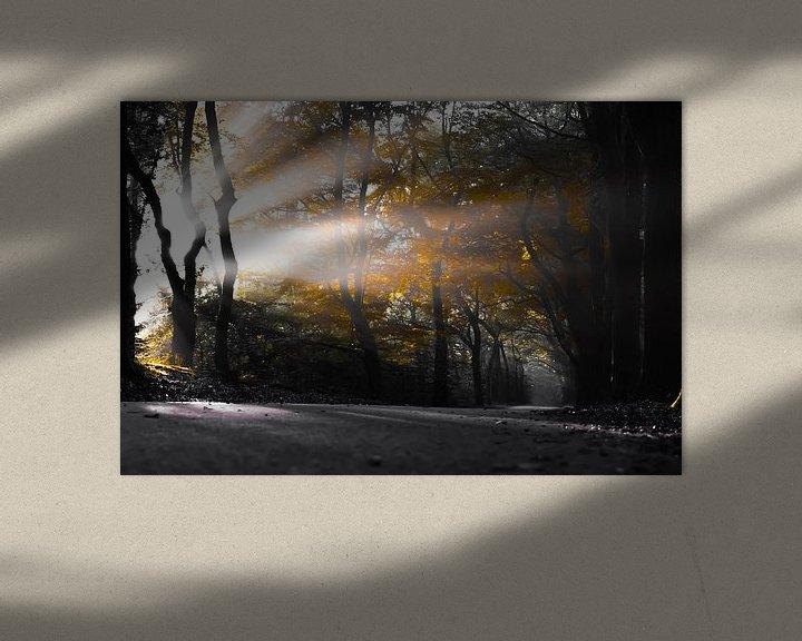 Beispiel: Im Herbst. von Sebastiaan Peek