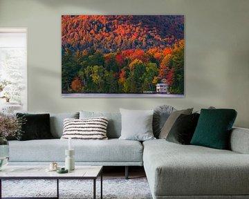 Herfst bij Mirror Lake, Lake Placid, New York State van Henk Meijer Photography