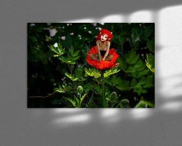 Poppy - Garden Fairy