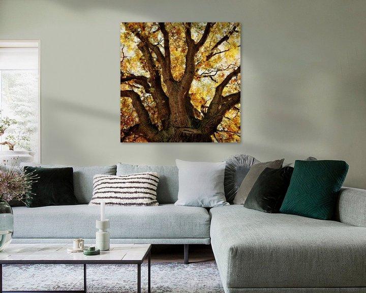 Beispiel: Eiche im Herbst von Ines van Megen-Thijssen