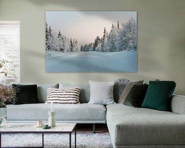 Finlande au milieu de l'hiver