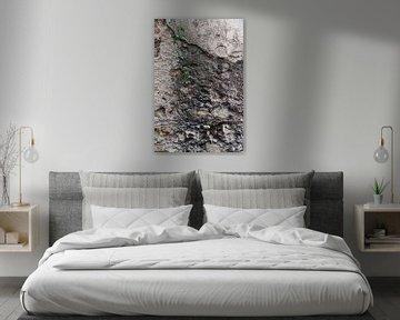 Detail einer verwitterten Wand von Anouschka Hendriks