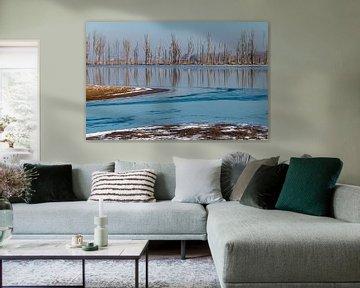 Biesbosch in de winter van Corrie Ruijer