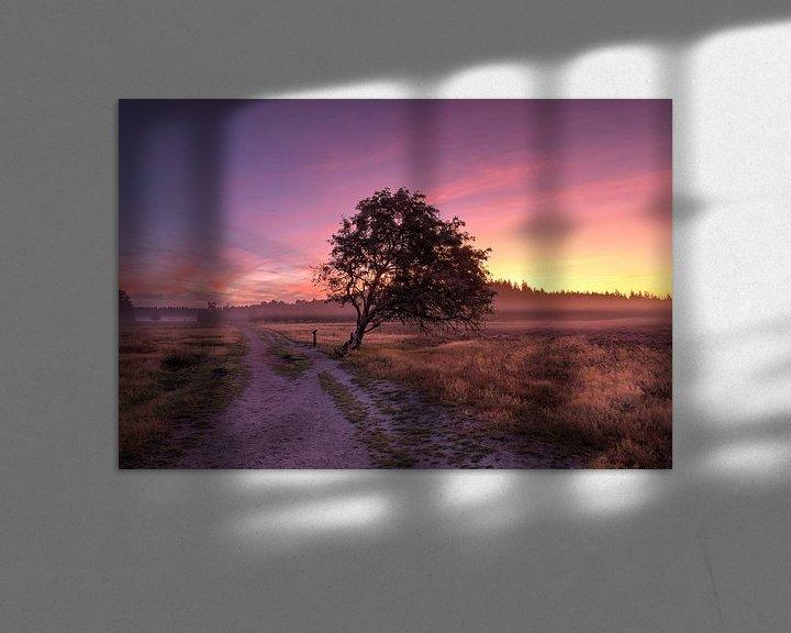 Sfeerimpressie: Heide landschap van Fotografie Ronald