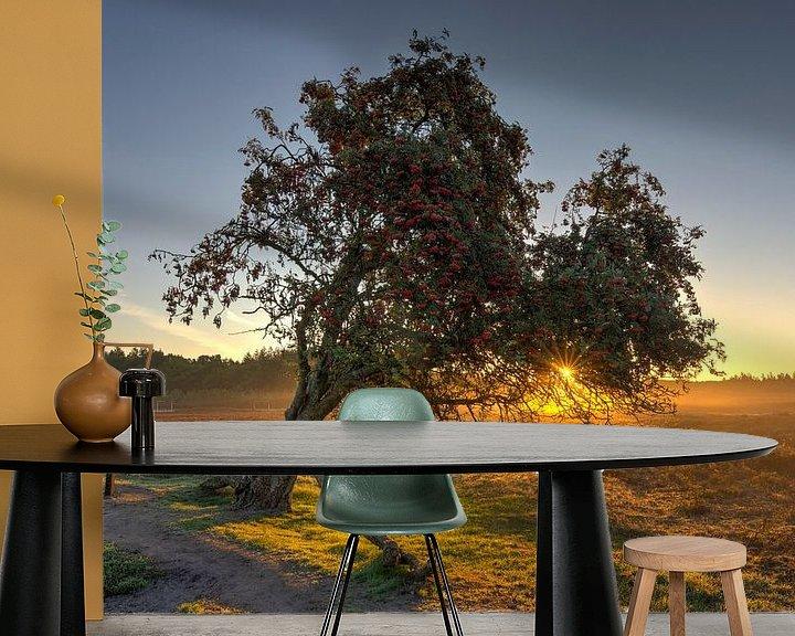 Sfeerimpressie behang: Lijsterbes boom van Fotografie Ronald